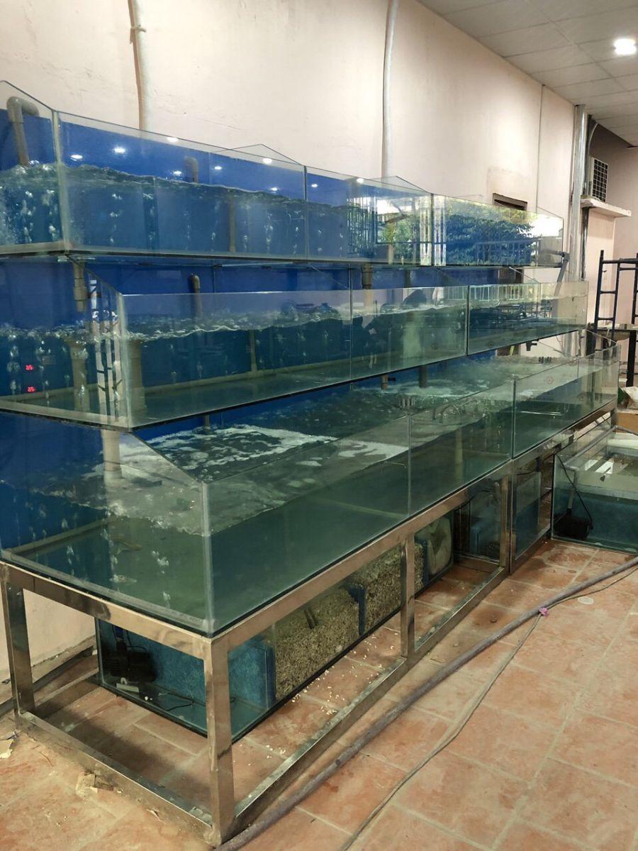 Hồ cá Thủy Sinh HCTS001